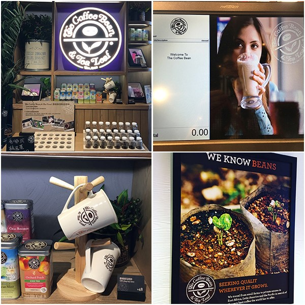 Coffee Bean Opening Picture